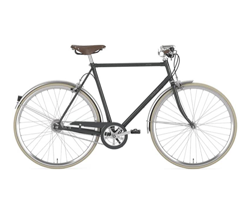Fixie Bike Gazelle van Stael grau Singlespeed grey